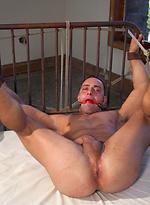 Fabio Stallone - Beefy Italian Stallion with Fat Cock