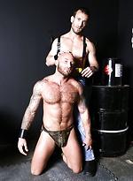 High Performance Men - Pup Grooming