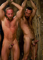 Three muscle studs get a hard worked over by Van Darkholme.