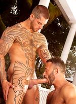 Logan McCree & Wilfried Knight